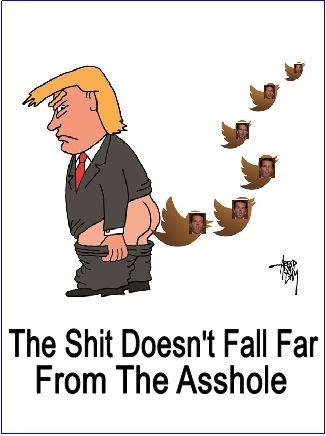 Trump Shitting Jr Tweet