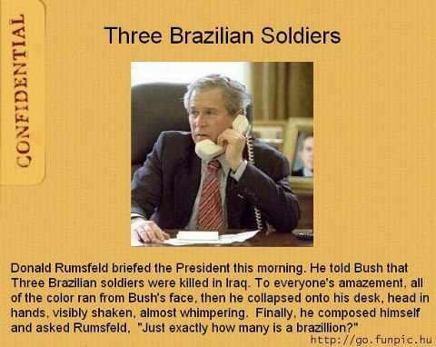 bush 3 brazilian