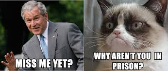 cat wants bush in prison