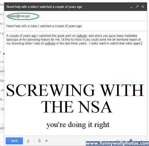 screwing with nsa