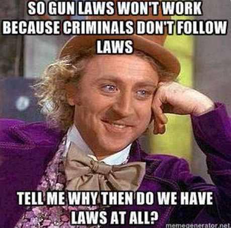 8-wilder gun laws
