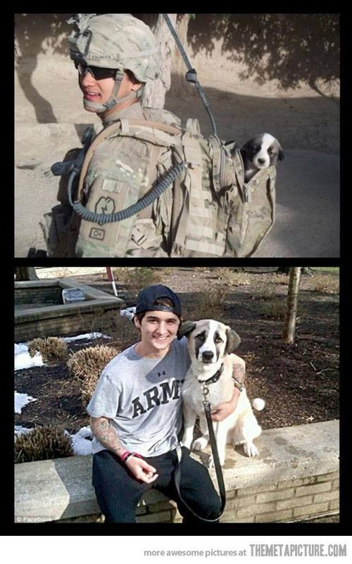 Army guy and dog, cool