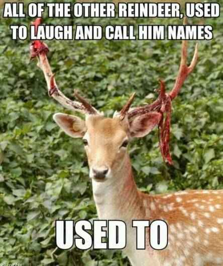 Silly rudolph