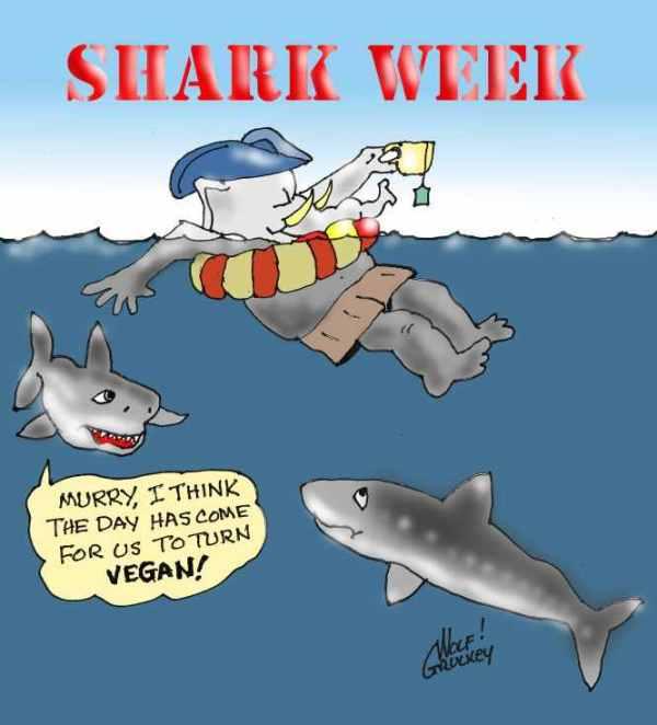 wolf-shark-week