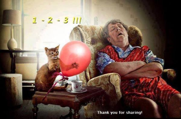 Cat+Ballon+Sleeping Woman