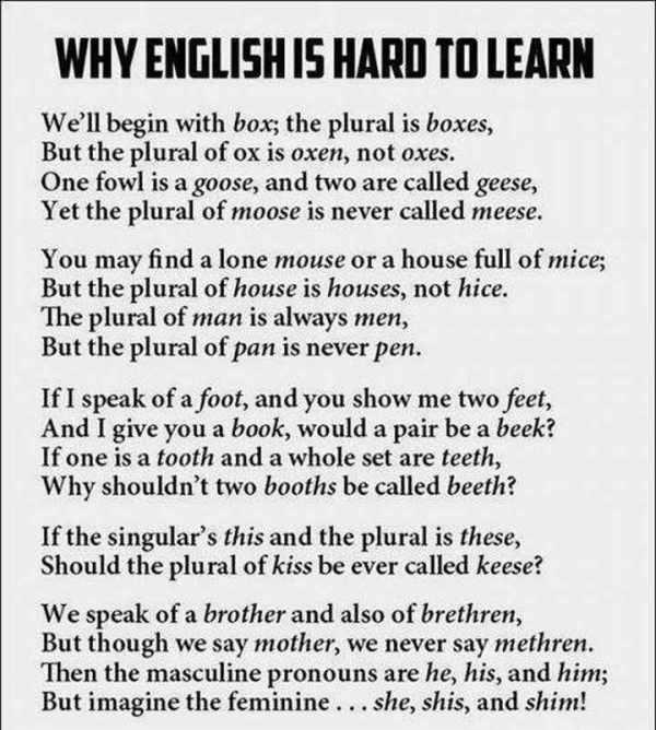 english-bitch-to-learn