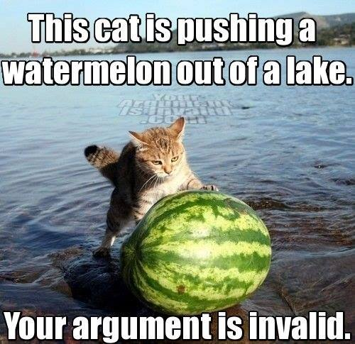 Cat Pushing Watermelon