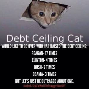 Debt Ceiling Cat